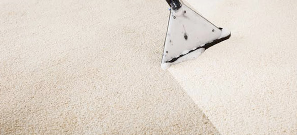 Cleaning A Dirty Carpet, Visually Huge Change Between Unclean & Cleaned Carpet - Carpet Cleaning Services Perth
